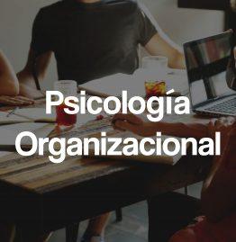 Psicologia organizacional-min (1)